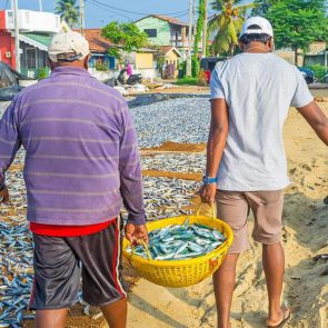 private-tours-to-sri-lanka-Negombo-img-03